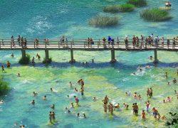 bridge-1718232_1280